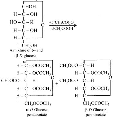 NCERT Solutions for Class 12 Chemistry Chapter 14 Biomolecules 5