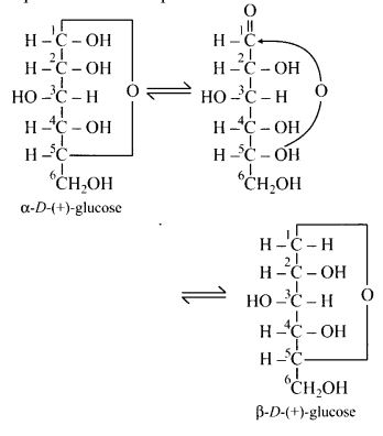 NCERT Solutions for Class 12 Chemistry Chapter 14 Biomolecules 6