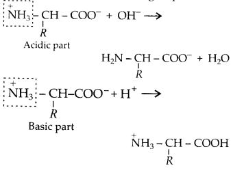 NCERT Solutions for Class 12 Chemistry Chapter 14 Biomolecules 9