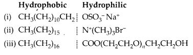NCERT Solutions for Class 12 Chemistry Chapter 16 Chemistry in Every Day Life 13