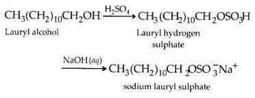 NCERT Solutions for Class 12 Chemistry Chapter 16 Chemistry in Every Day Life 5