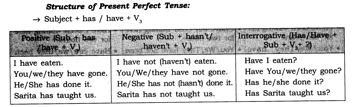 Tenses Exercises for Class 7 CBSE With Answers 6