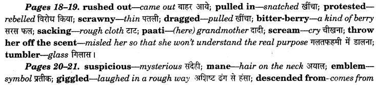 NCERT Solutions for Class 7 English Honeycomb Chapter 2 A Gift of Chappals 1