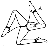 NCERT Solutions for Class 7 maths Algebraic Expreesions img 158