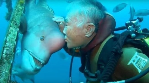 Hace 3 décadas salvó a un pez y ahora cada año lo visita