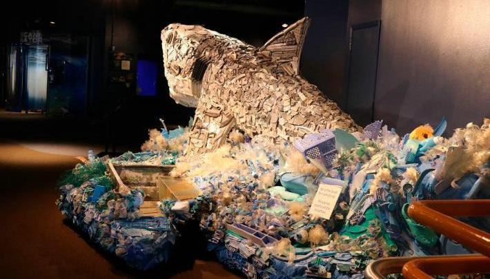Artista convierte basura marina en esculturas