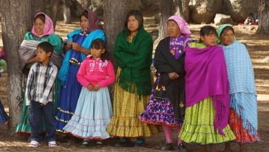 Mujeres indígenas estudiarán inglés en la Universidad de Toronto