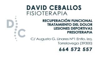 Fisioterapia David Ceballos