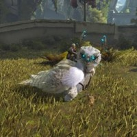 【ARK】雪フクロウ(Snow Owl)のテイム方法と能力