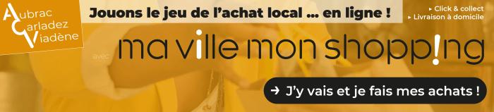 Bandeau-web-site-MVMS 3