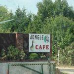 Jungle Cafe CC Bexley A20 meeting