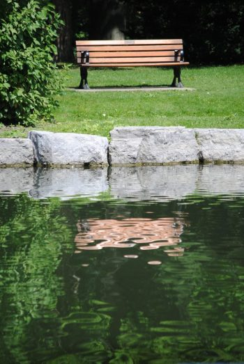 Photo of a park bench