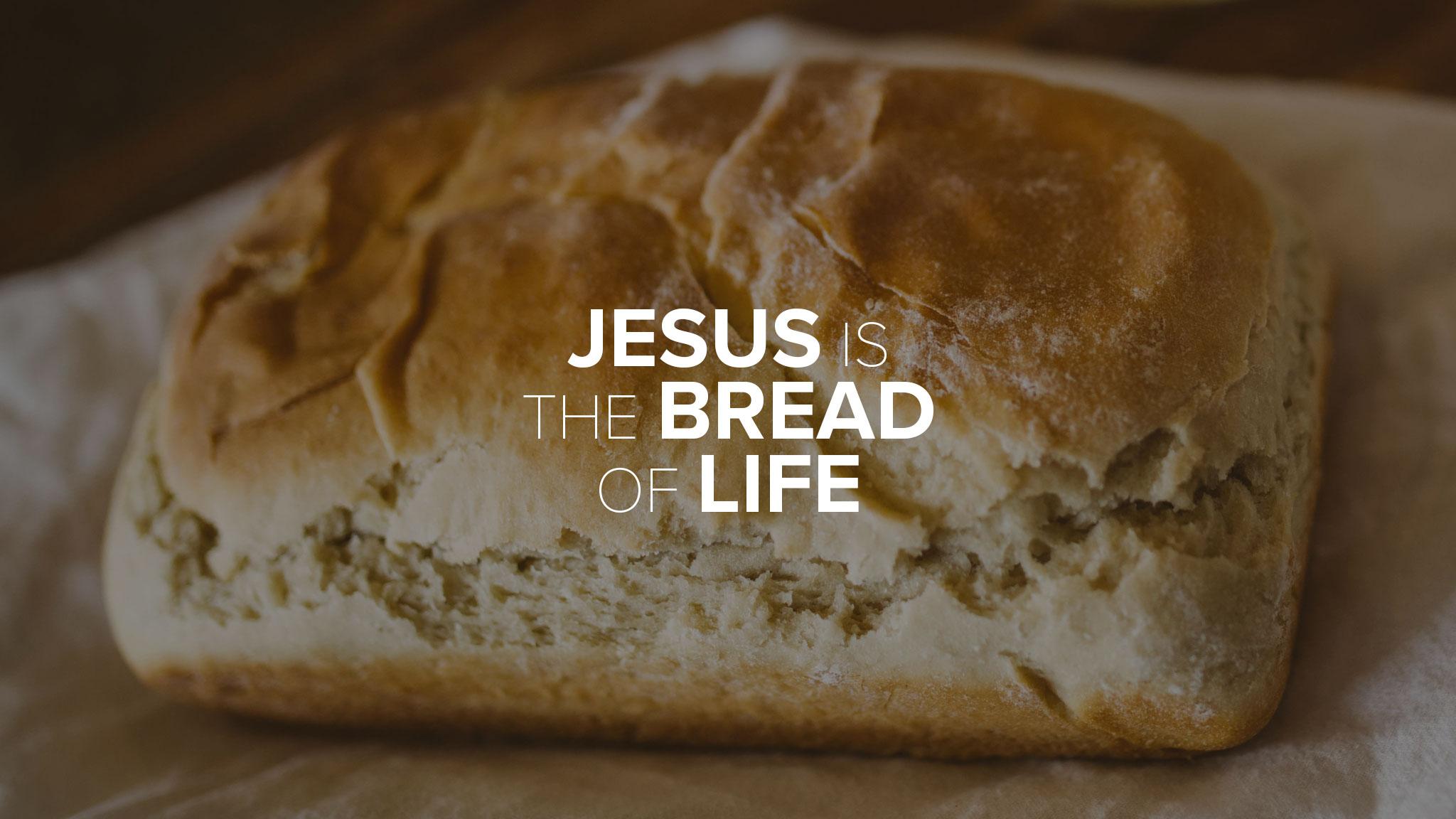 The Bread Recipe