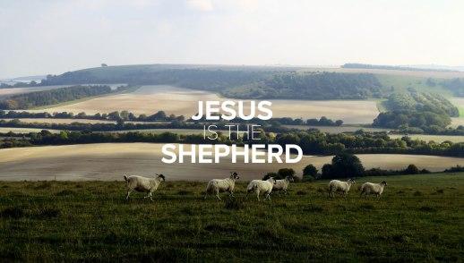 Jesus is the Shepherd: Depend on Him