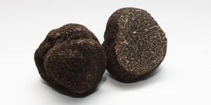 2-truffes