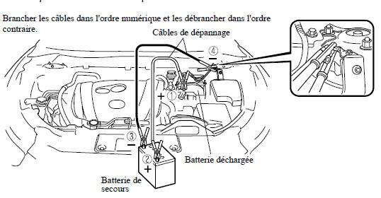 infinitum batterie desulfator dextérité manuelle