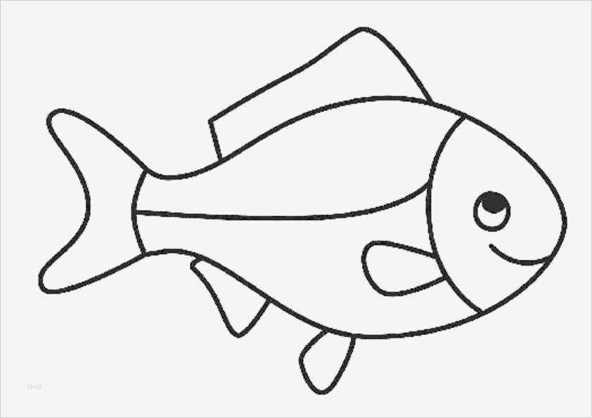 Malvorlagen Kostenlos Fische