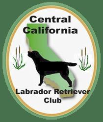 cclrc_logo