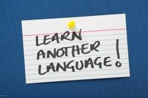 Conact information for CCLS Language school