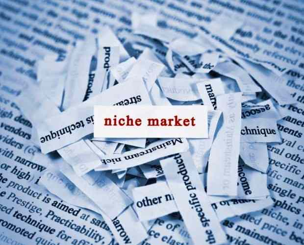 Why It's Important to Define Your Business Niche