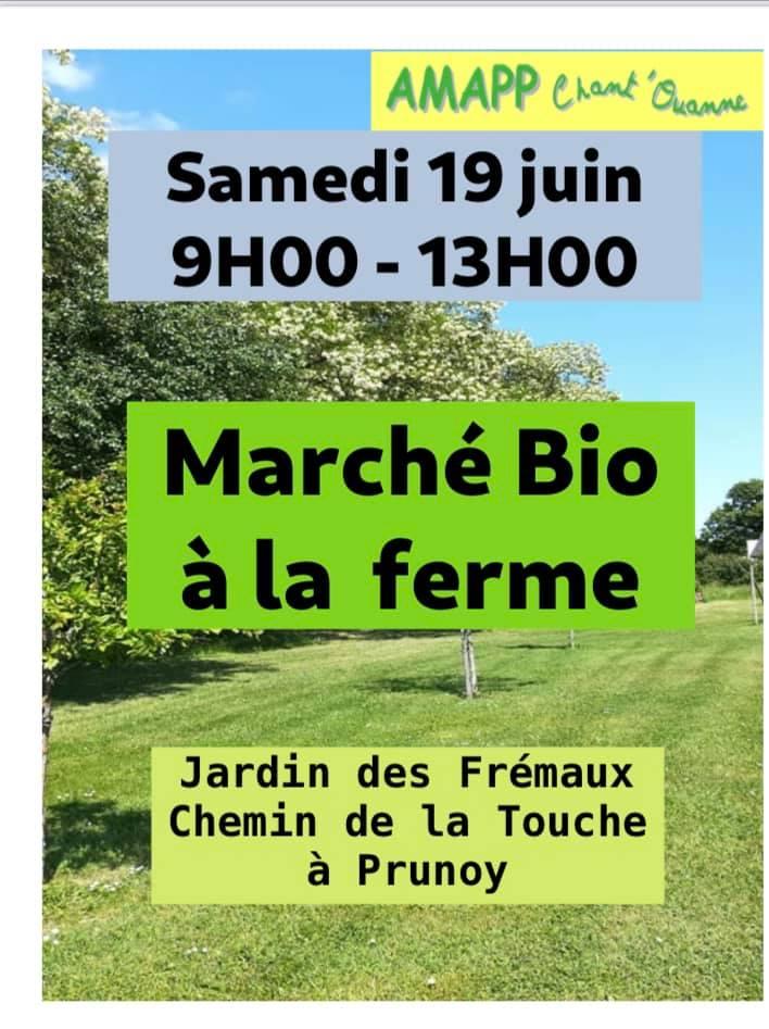 Amapp Chant'Ouanne Marché Bio 19 juin