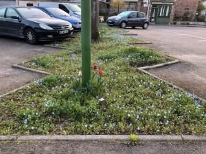 Fleurissement Parking Charny Orée de Puisaye 2