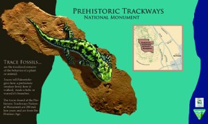 sample layout for a traveling exhibit for Prehistoric Pathways Monument