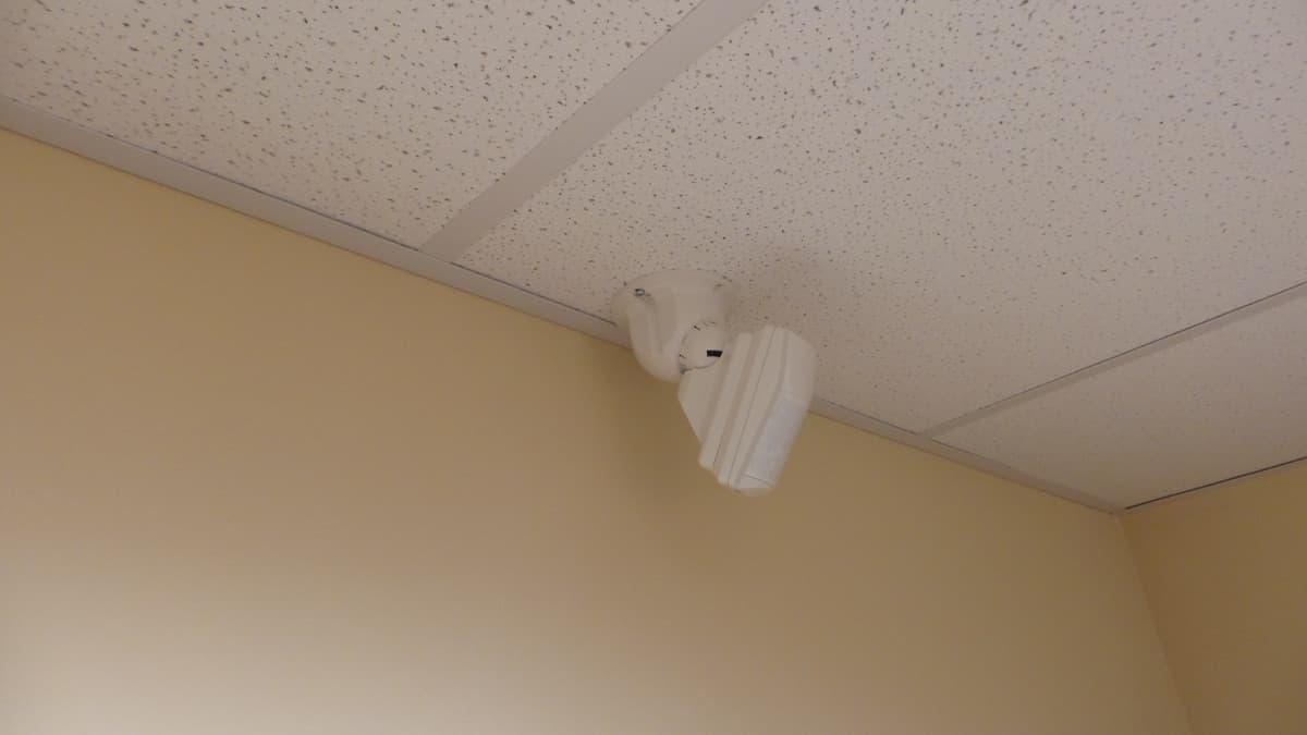 burglar alarm pir wiring diagram 12v for boats motion detector, pet immune indoor sensor, output, takex pa-450pi