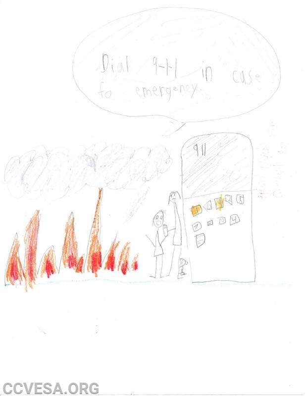 Carroll County holds Fire Prevention Poster Contest