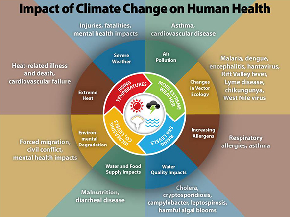 Climate Change and Public Health - Climate Effects on Health | CDC