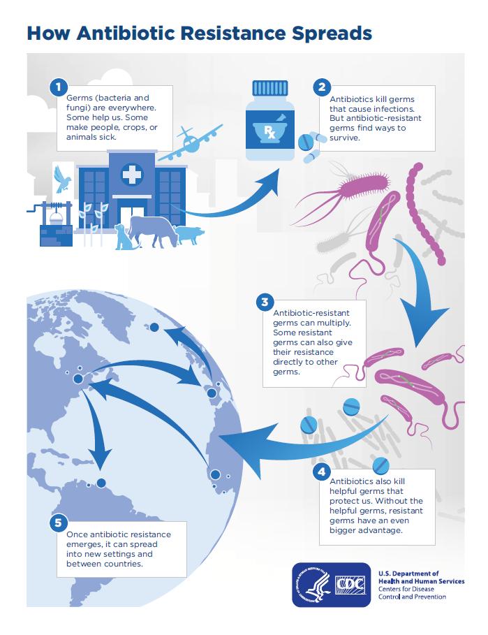 How Antibiotic Resistance Happens   Antibiotic ...