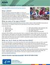 ADHD Fact Sheet