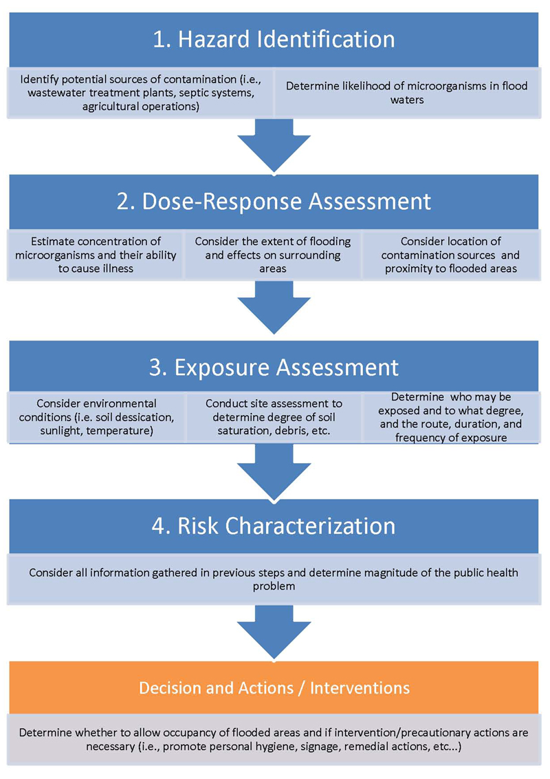 The Four Steps Of The Risk-Assessment Process