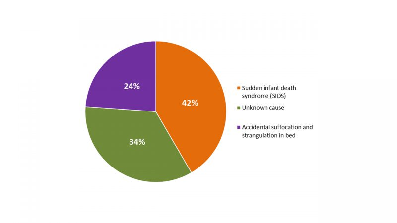 The breakdown of sudden unexpected infant deaths by cause in 2014 is as follows: 44% of cases were categorized as sudden infant death syndrome, followed by unknown cause (31%), and accidental suffocation and strangulation in bed (25%).