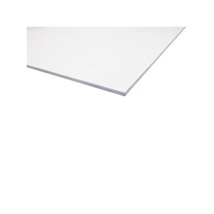 plaque pvc expanse blanc l 200 cm l 100 cm e 10 mm blanc