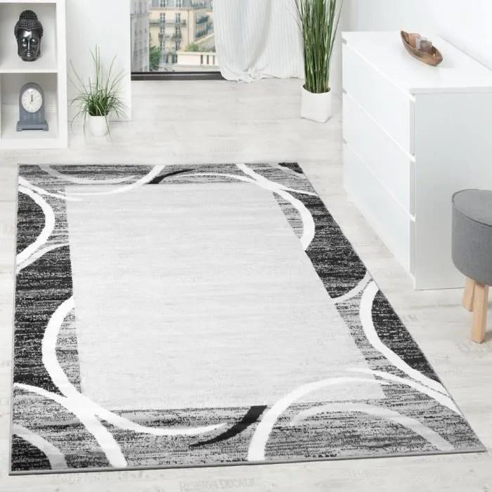 tapis gris 200x300