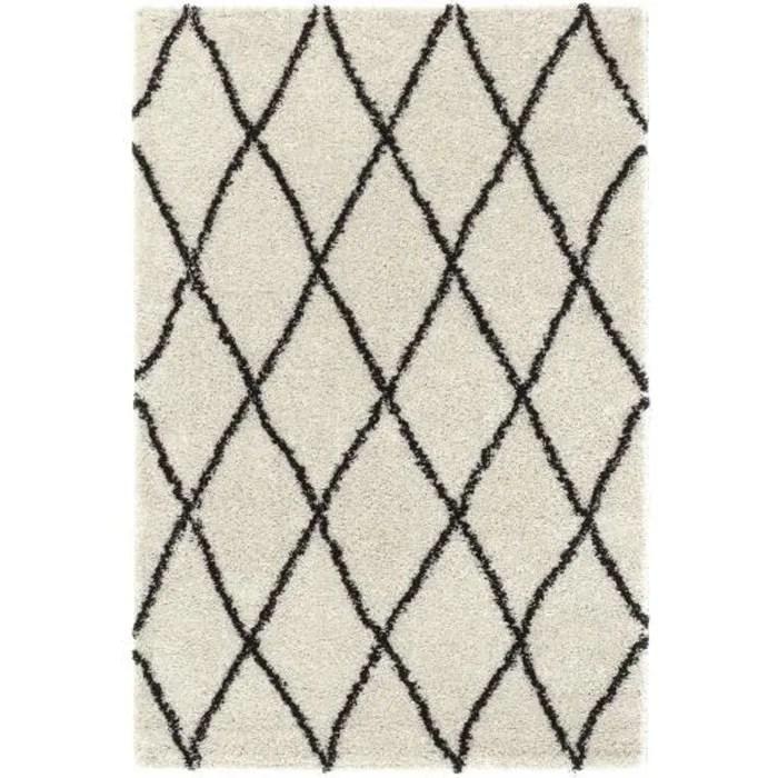 tapis berbere 200x300