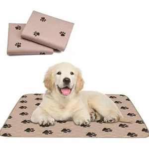 tapis absorbant chiens