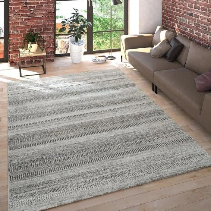 salon tapis poils ras chine design multicolore ray