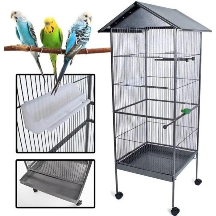 oiseau cdiscount animalerie