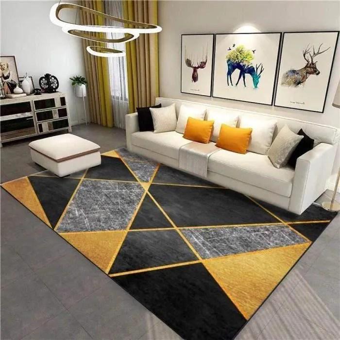 tapis contemporain doux grand dimensions salon tap
