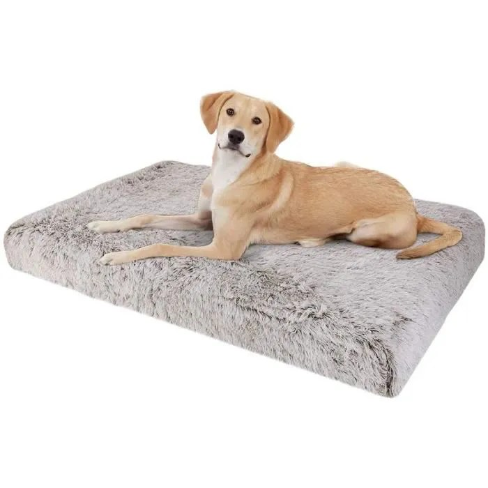coussin chien grande taille