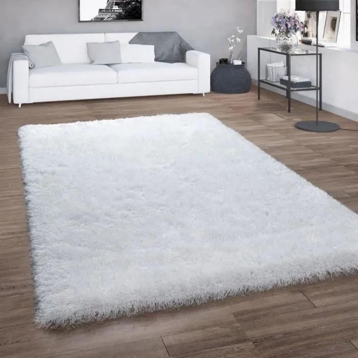 tapis poils longs pour salon shaggy avec fil bril