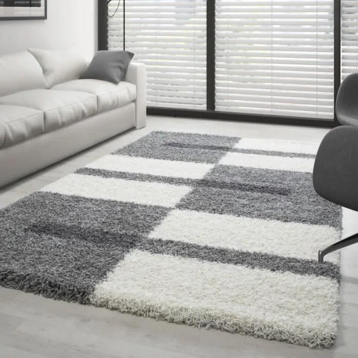tapis design pour salon