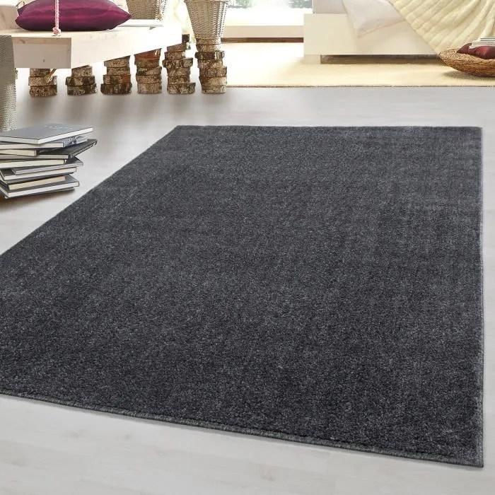 tapis moderne a poils courts optique gabbeh unicolore sejour ver couleurs tailles gris 160x230 cm