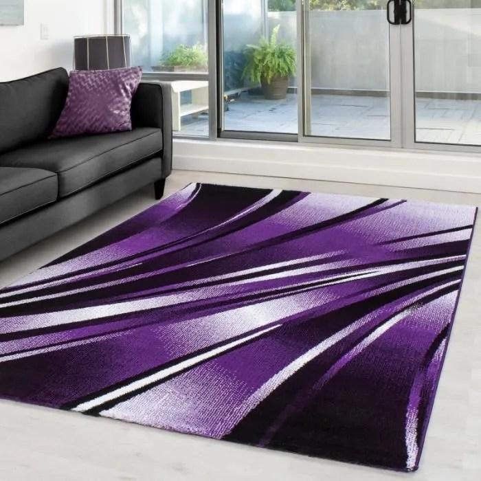 tapis violet 160x230