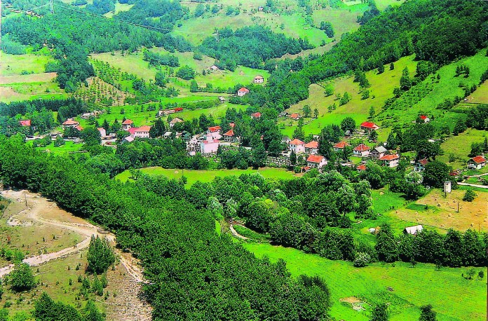 Pavino-Polje.jpg