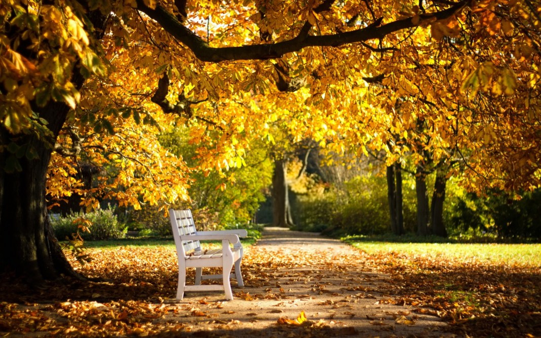 jesen-park.jpg