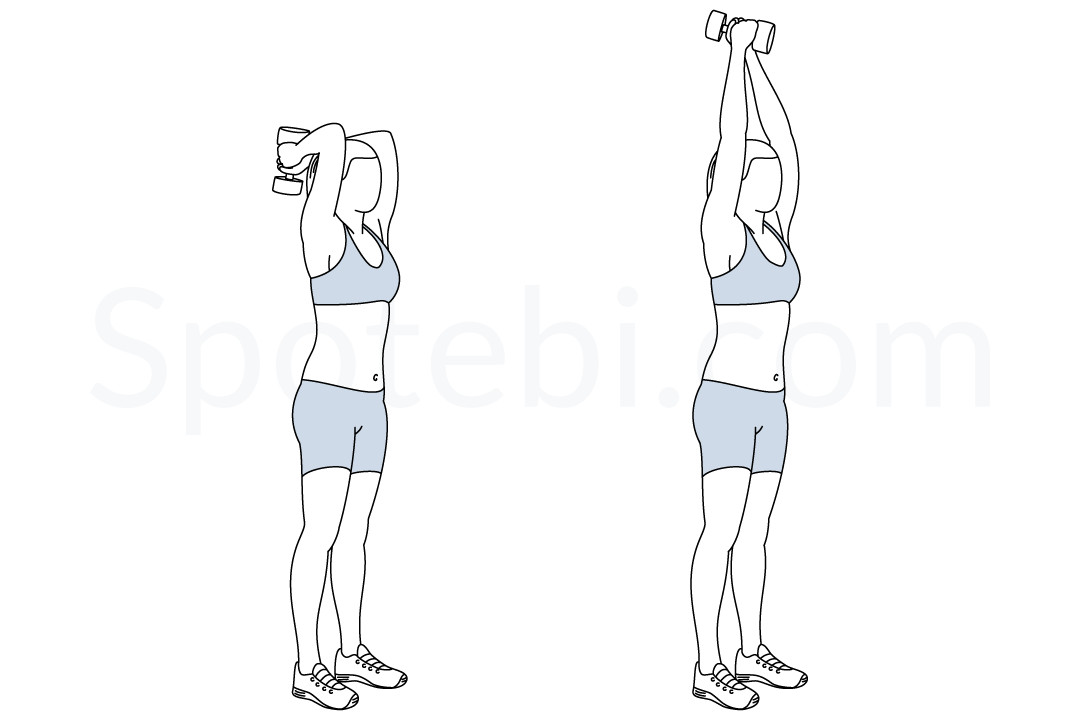 My top 50 at home bodyweight/dumbbell exercises