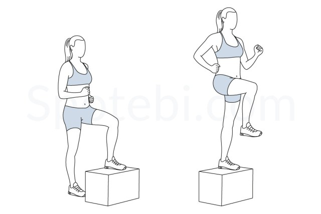 Image result for Lateral Step-Up With Lifts